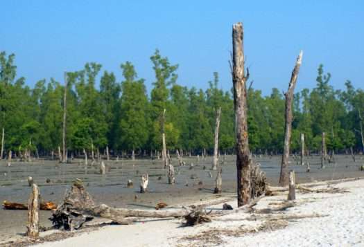 Non-Traditional Security Implications of Climate Change in Bangladesh