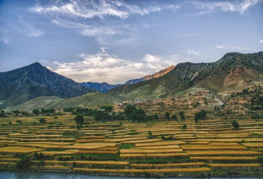 Afghanistan's Future: Regional Perspectives on the Road Ahead